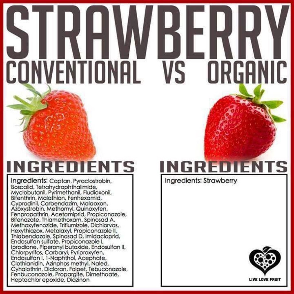 organic food vs conventional food